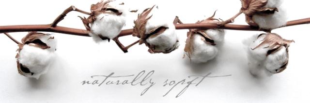Organic-Cotton-Banner